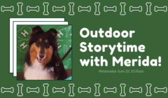 Outdoor Storytime with Merida!