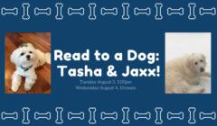 Read to a Dog: Tasha and Jaxx!